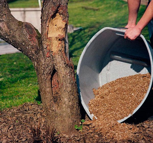 утилизация отходов торфяного биотуалета